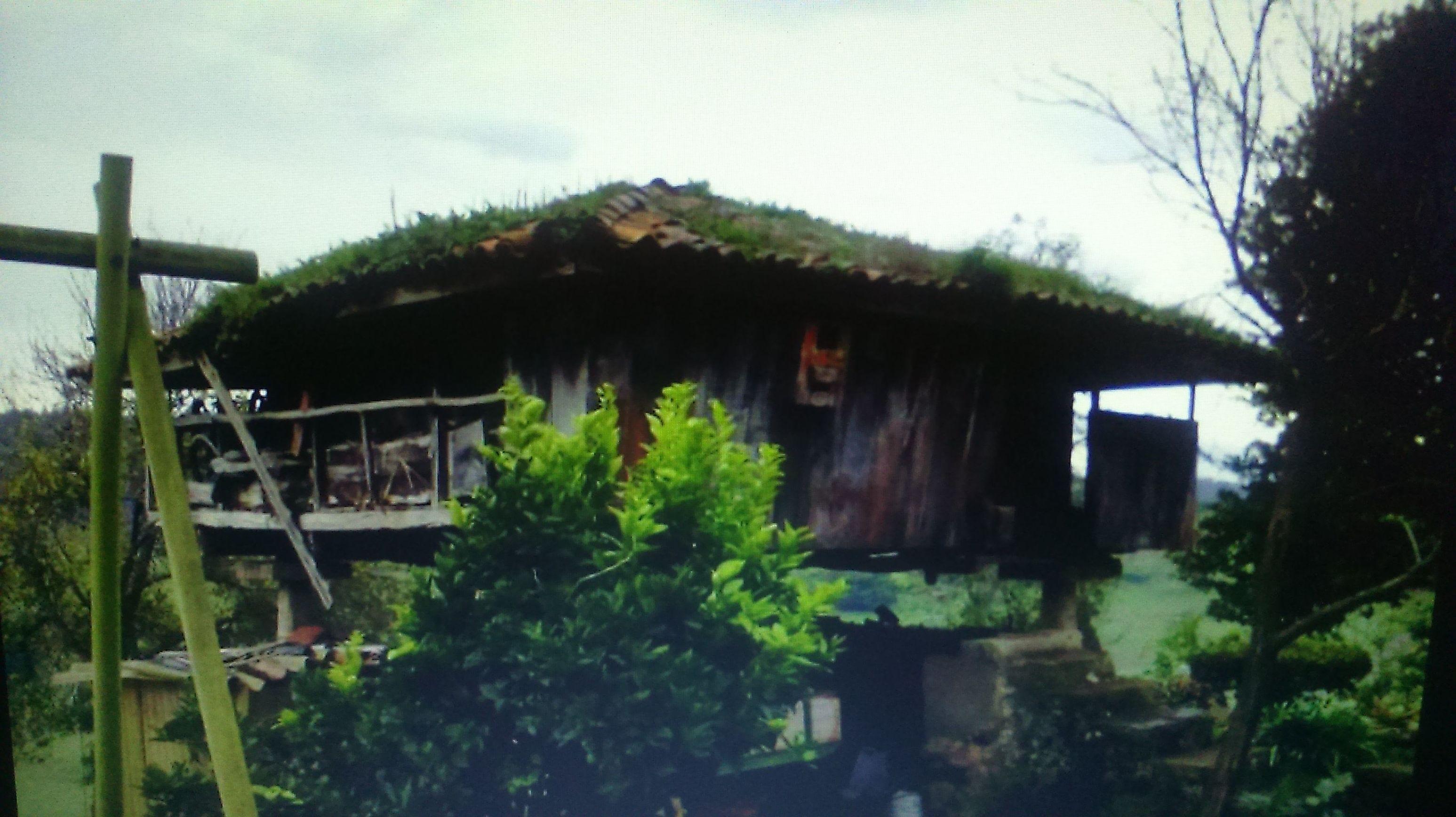 Construcción de hórreos en Asturias