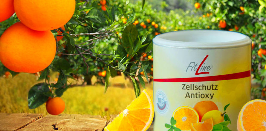 FitLine Zellschutz Antioxy
