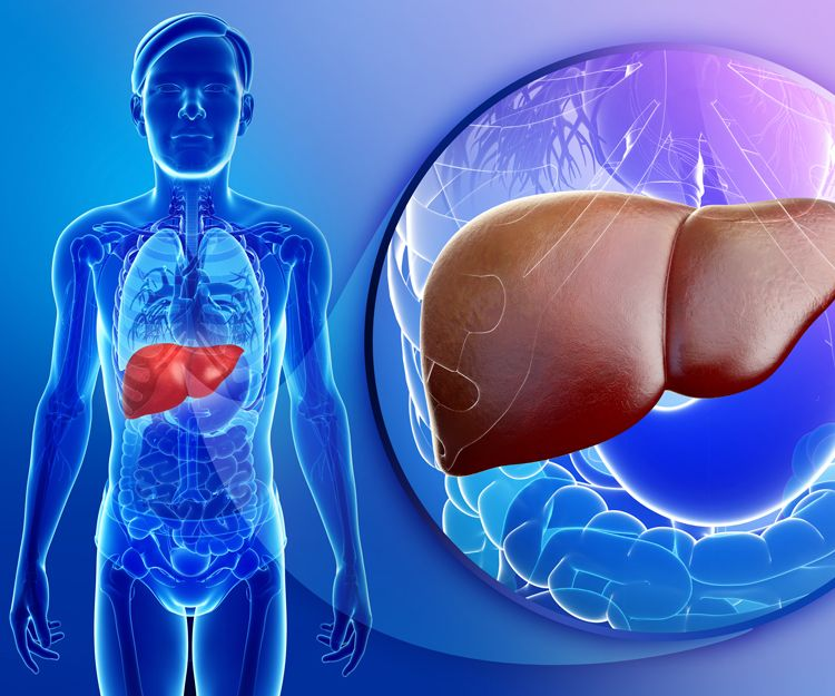 Tratamiento del cáncer de próstata en Málaga