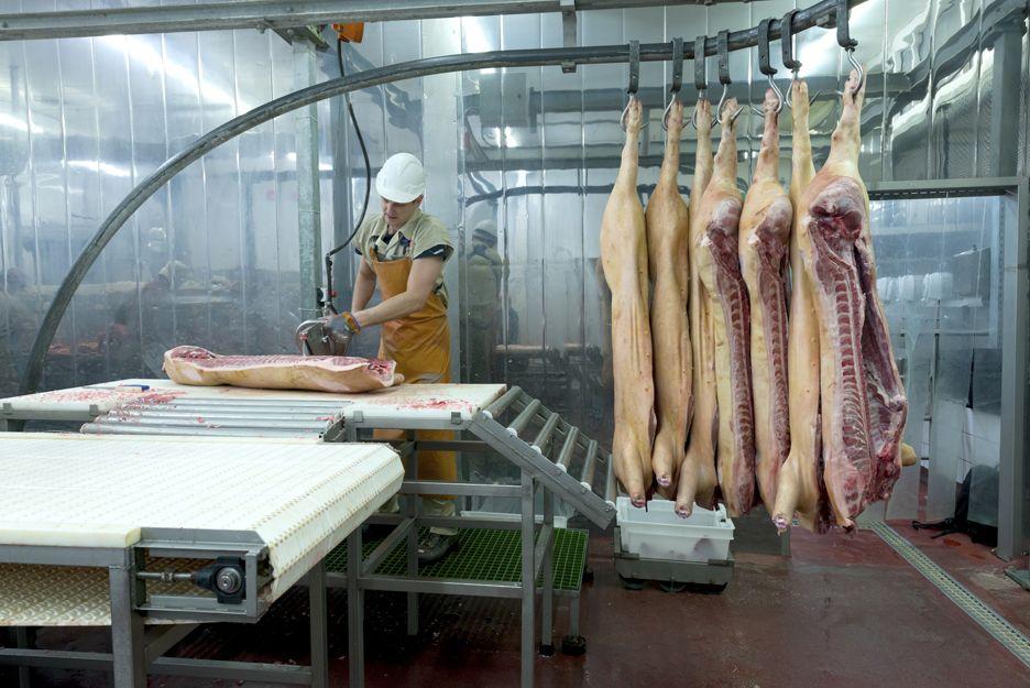 Maquinaria para la industrial cárnica en Ciudad Real