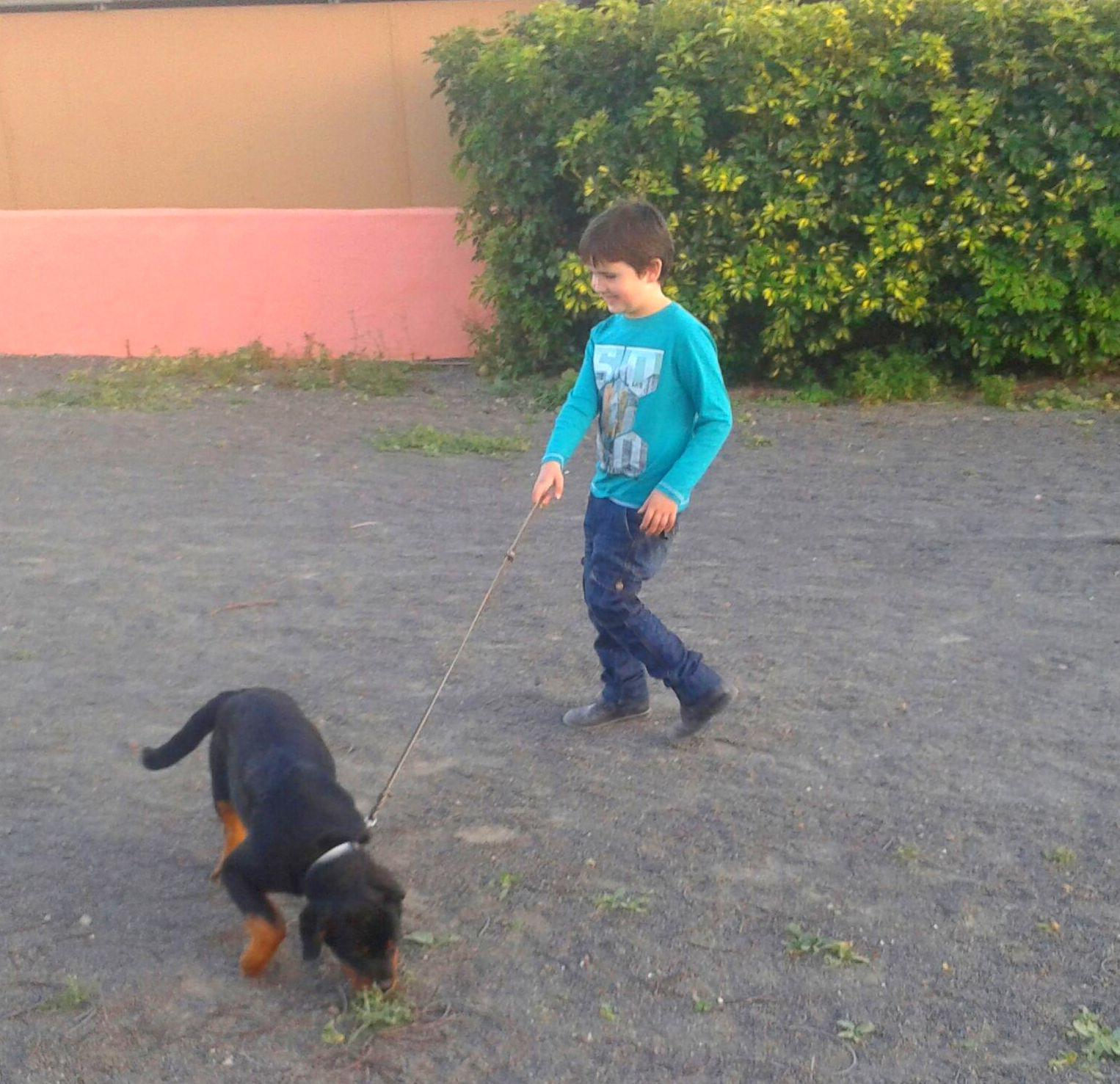 Gabriel con Jumbo