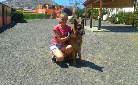Cría y adiestramiento de perros en Las Palmas de Gran Canaria