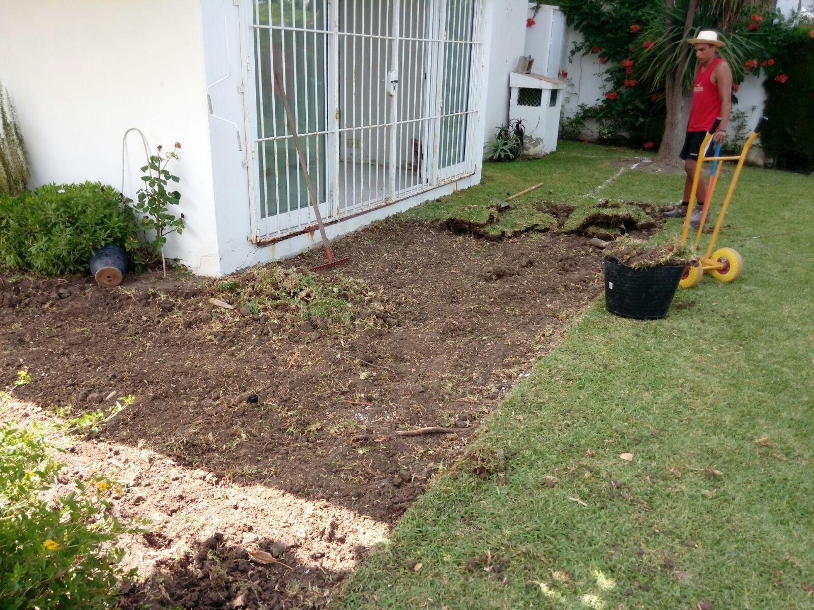 Diseño y mantenimiento de jardines: Servicios de Servicios del Río