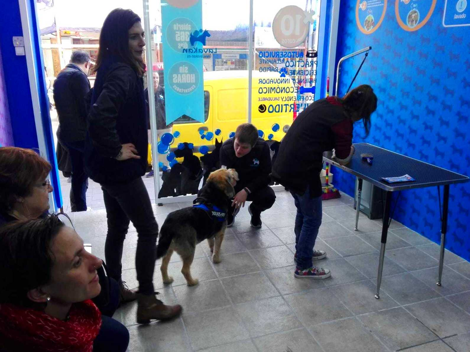 Foto 63 de Tiendas de animales en  | VIP'S