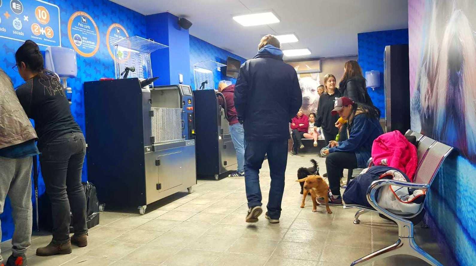 Foto 68 de Tiendas de animales en  | VIP'S