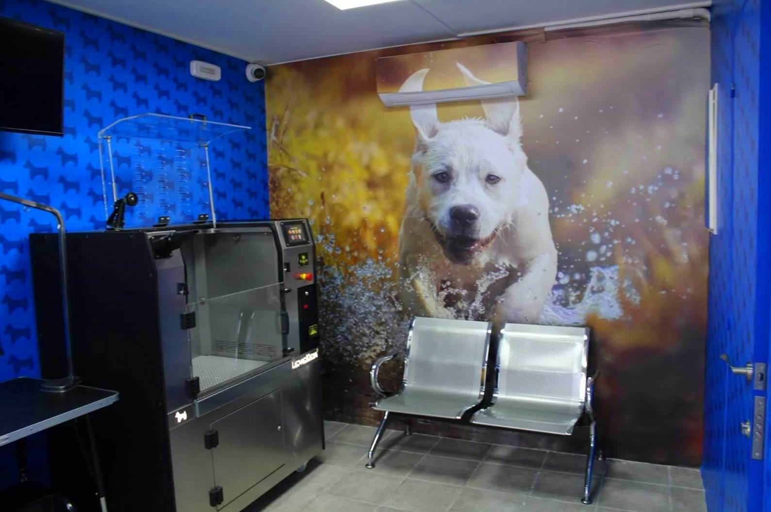 Autolavado para perros en Gavá