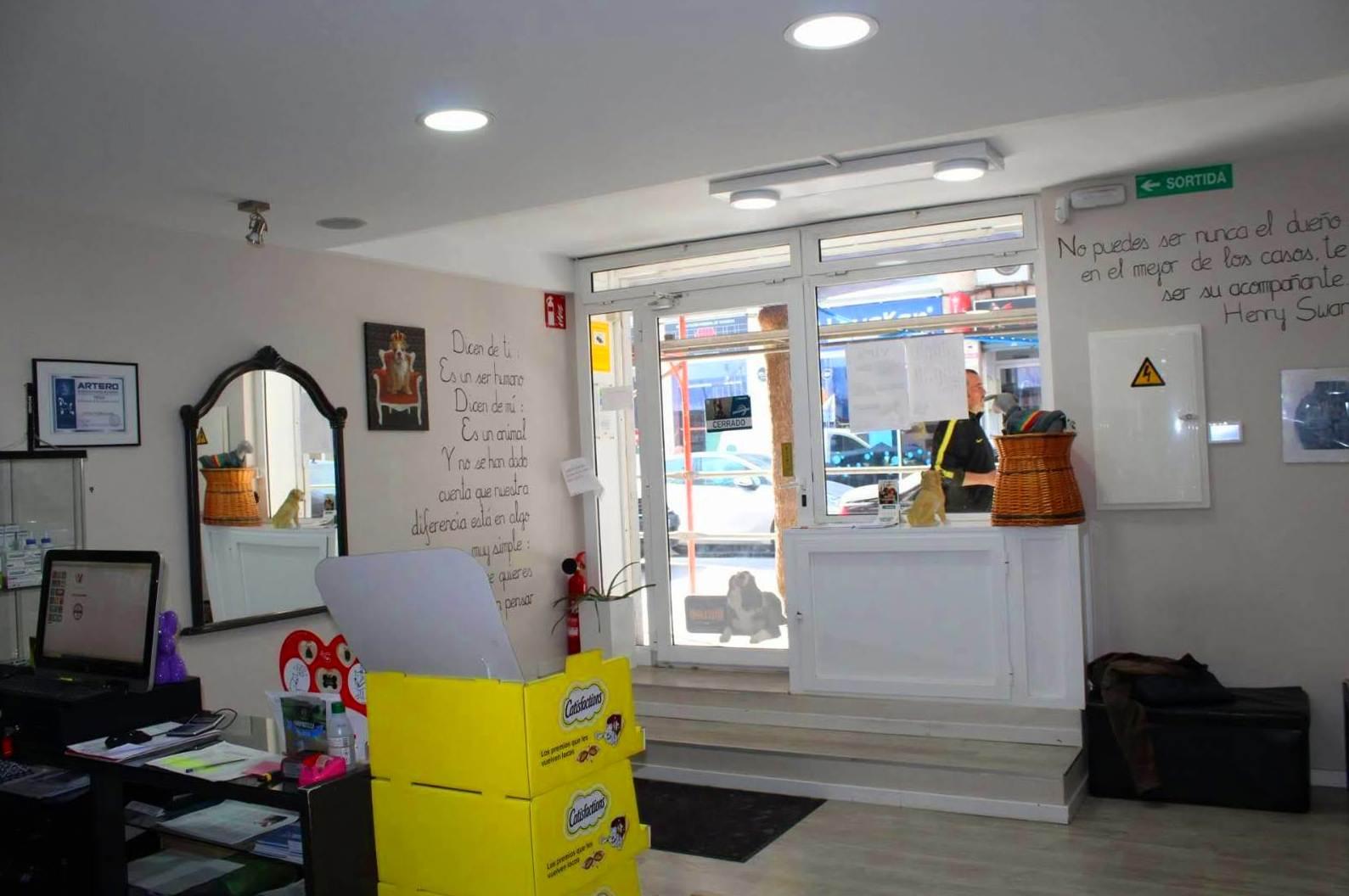 peluquería Canina en Castelldefels