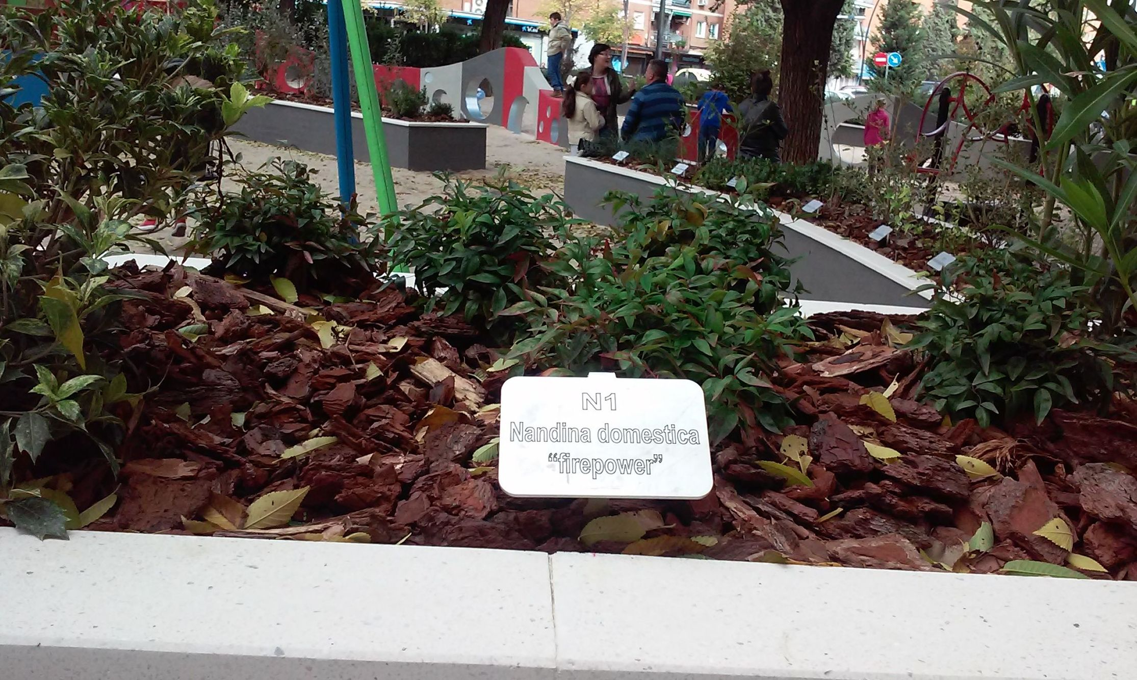 Foto 82 de Diseño y mantenimiento de jardines en  | Danimayos Crea Tu Jardin