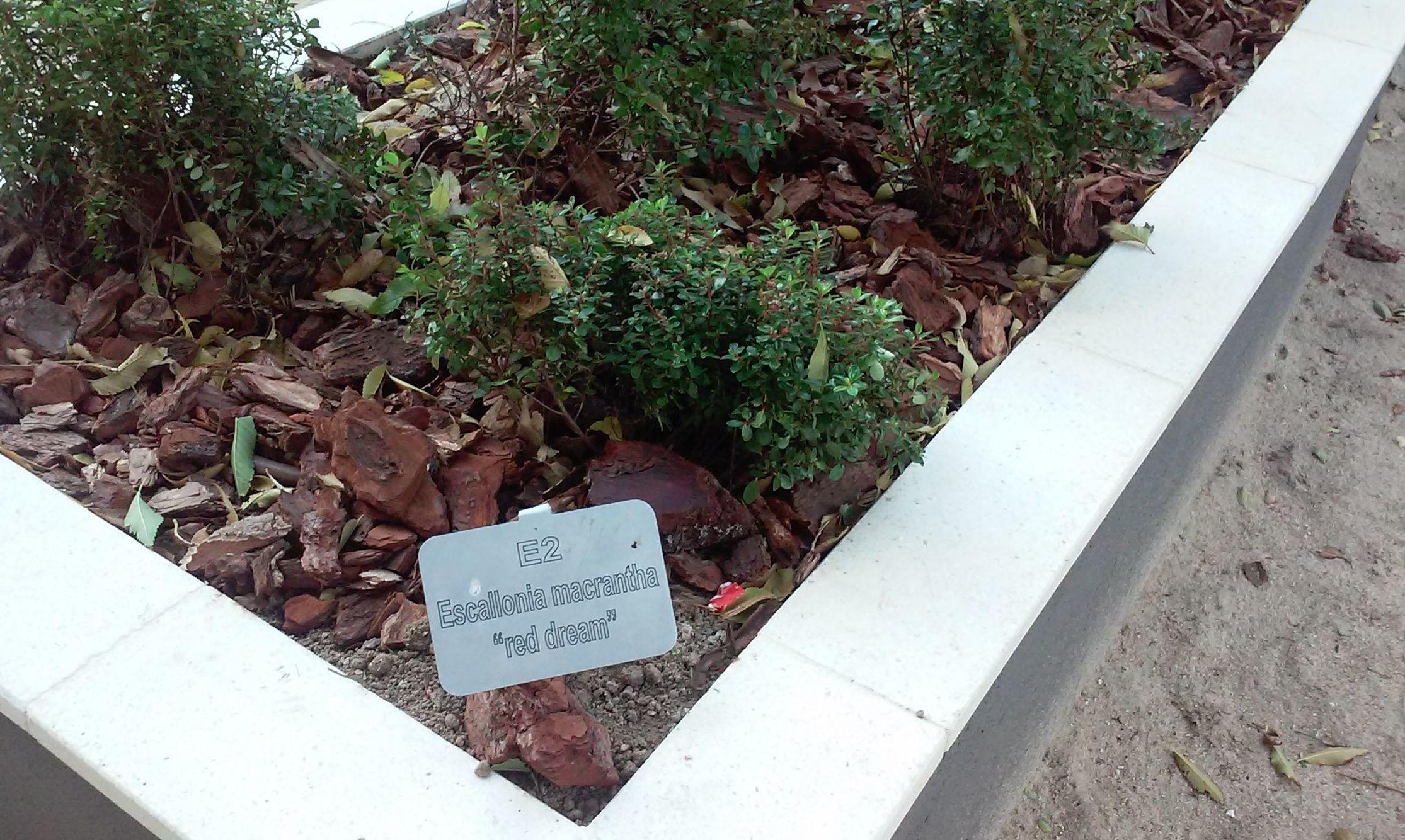 Foto 95 de Diseño y mantenimiento de jardines en  | Danimayos Crea Tu Jardin