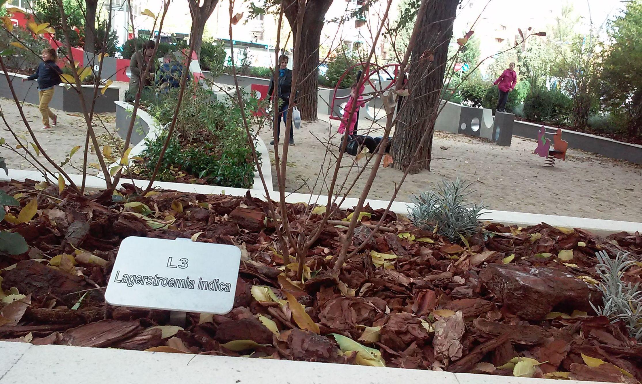 Foto 85 de Diseño y mantenimiento de jardines en  | Danimayos Crea Tu Jardin