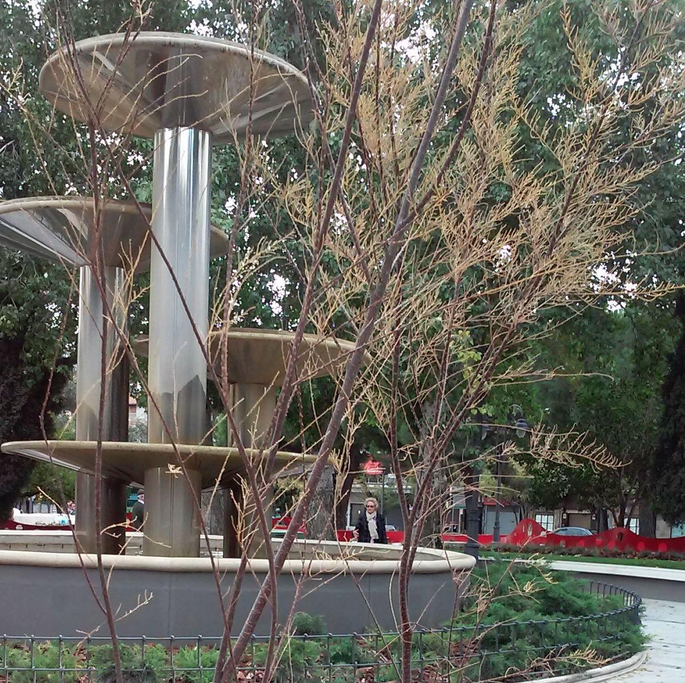 Foto 66 de Diseño y mantenimiento de jardines en  | Danimayos Crea Tu Jardin