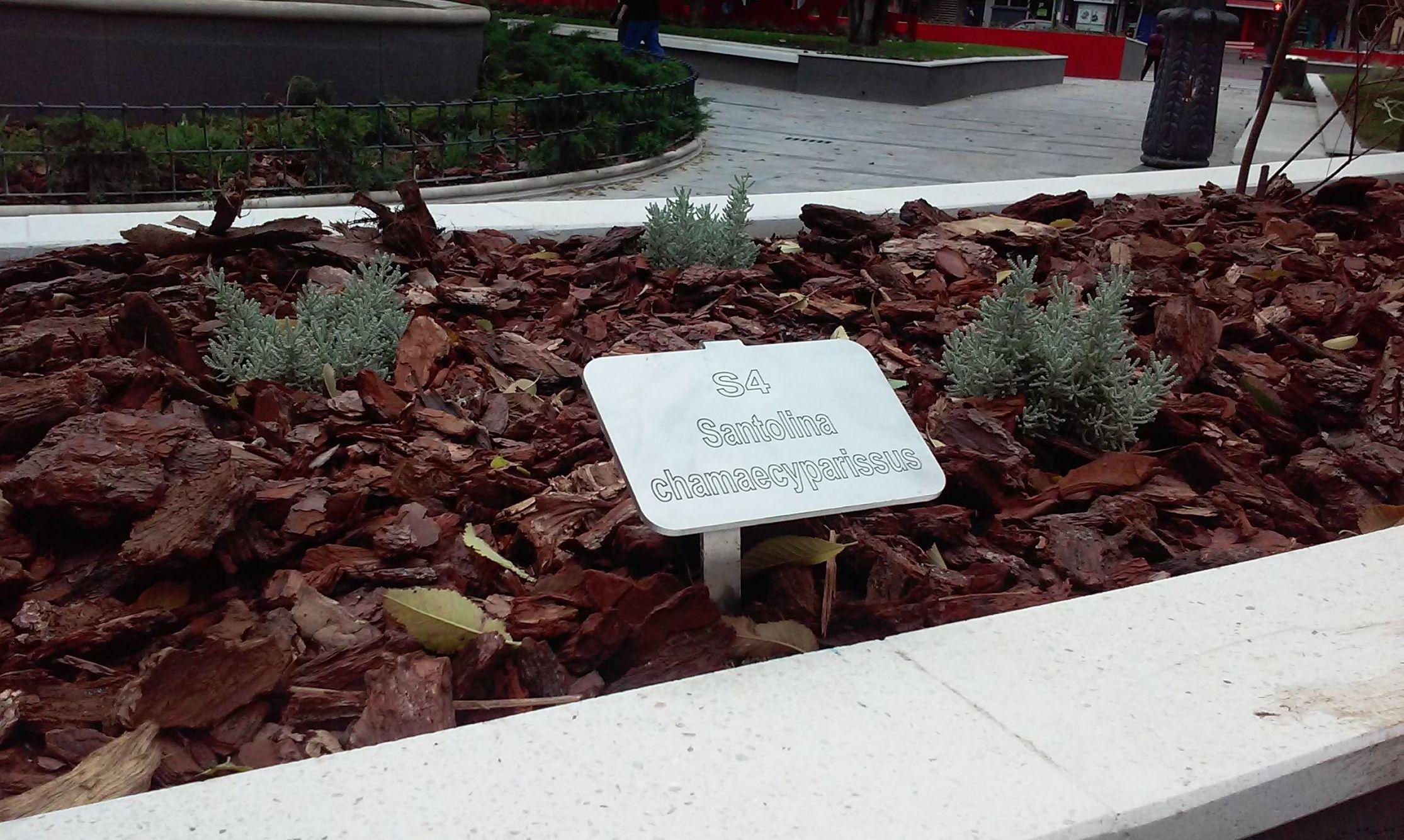 Foto 68 de Diseño y mantenimiento de jardines en  | Danimayos Crea Tu Jardin