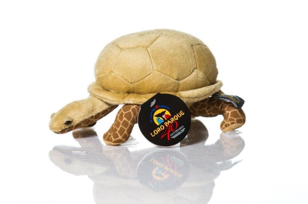 Tortuga pequeña / Small Turtle: Productos de BELLA TRADICION