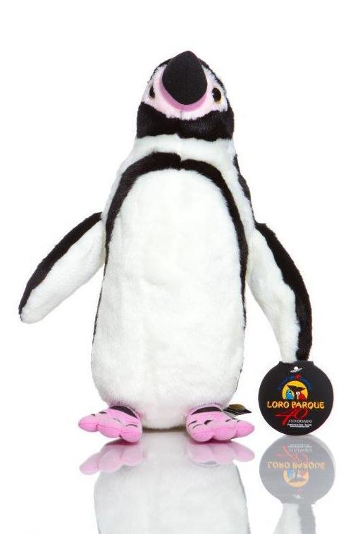 Pingüino Humboldt / Humboltd Penguin: Productos de BELLA TRADICION