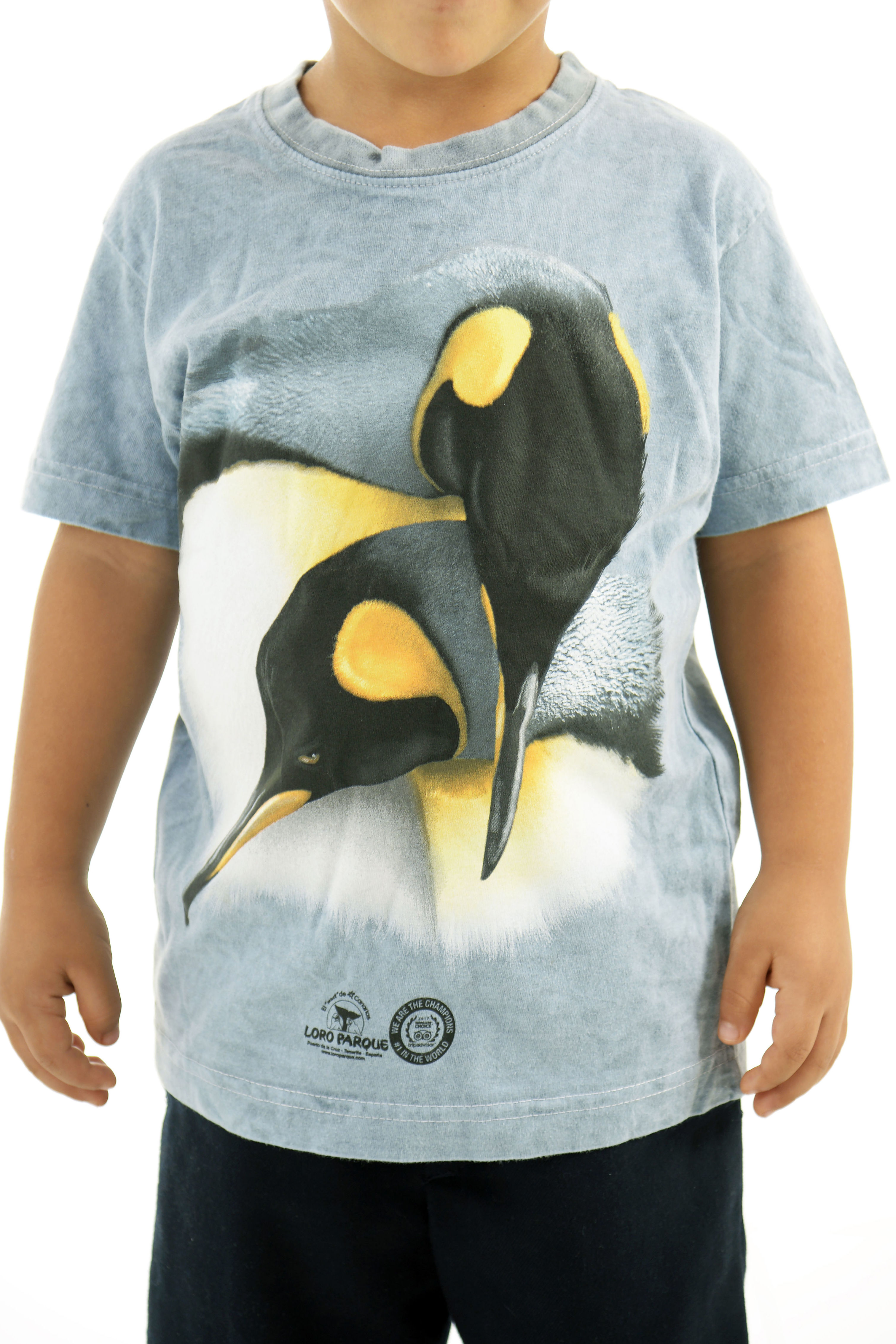 Camiseta Niñ@ 2 Pingüinos / 2 Penguins Child´s T-Shirt: Productos de BELLA TRADICION