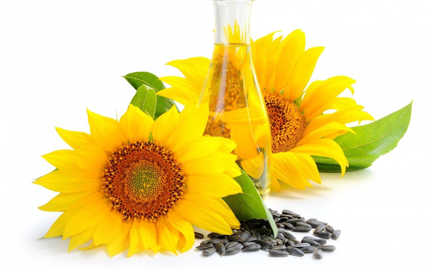 Obleas alimentarias con aceite de girasol