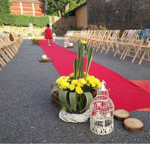 Flores y plantas para eventos Barro