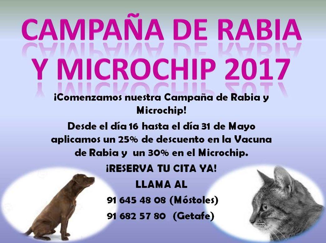 Campaña de Vacación de la Rabia canina y felina y el Microchip