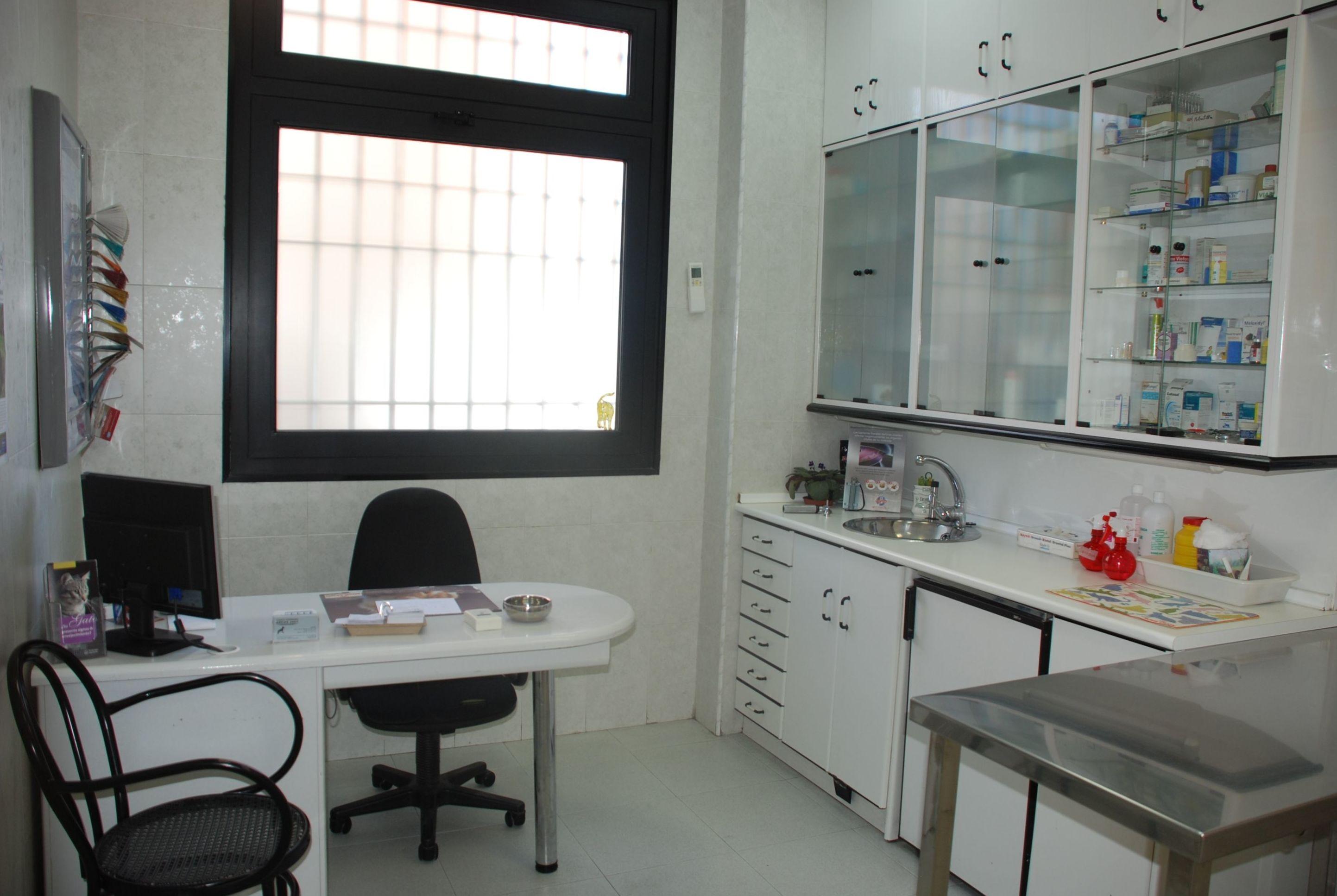consulta 1 Veterinario  Mostoles http://www.veterinariosmostoles.com/es/
