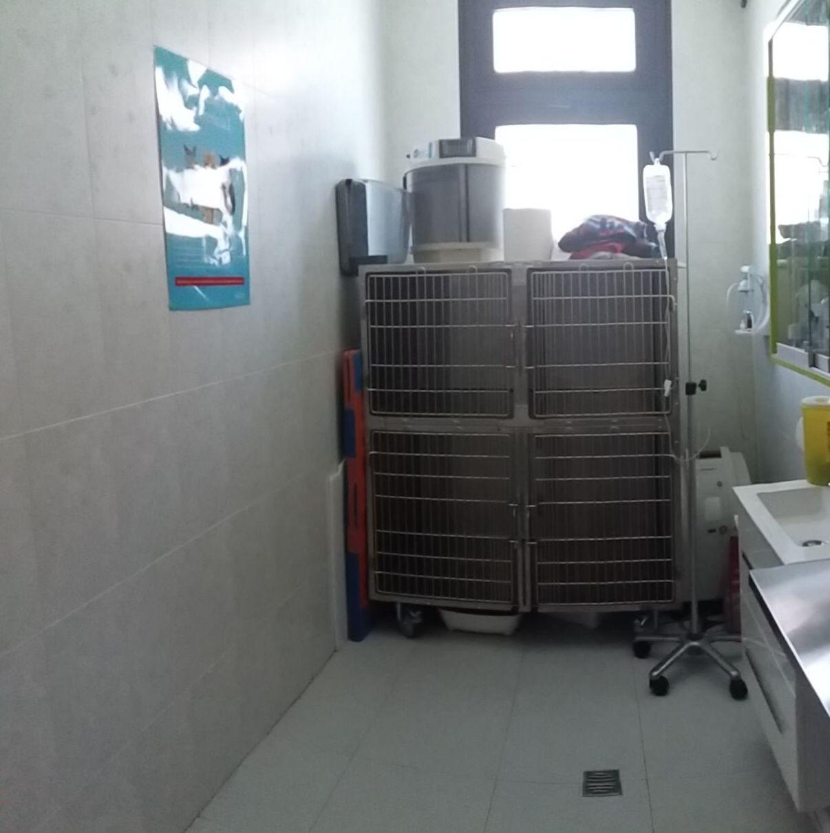 Hospital veterinario Mostoles http://www.veterinariosmostoles.com/es/