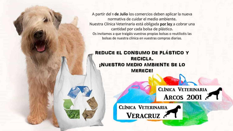 Reduce el consumo de plástico y recicla en Mostoles