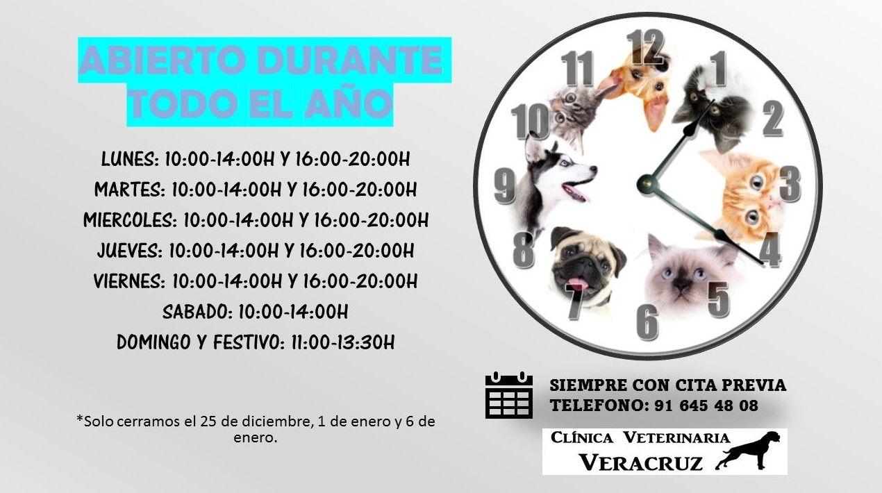 Horarios de la Clínica Veterinaria Veracruz