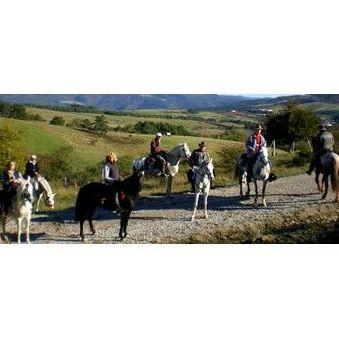 Paseos a caballo: Actividades de Club Hípico Arbayún