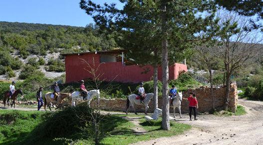 Rutas a caballo para familias o amigos por la Foz de Arbayún