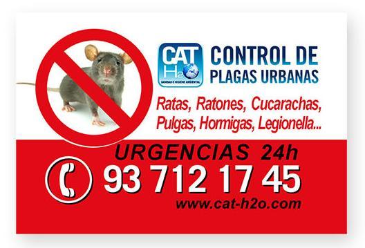Cat\u002Dh2o \u002D Control de Plagas Urbanas  y Tratamientos de Legionella