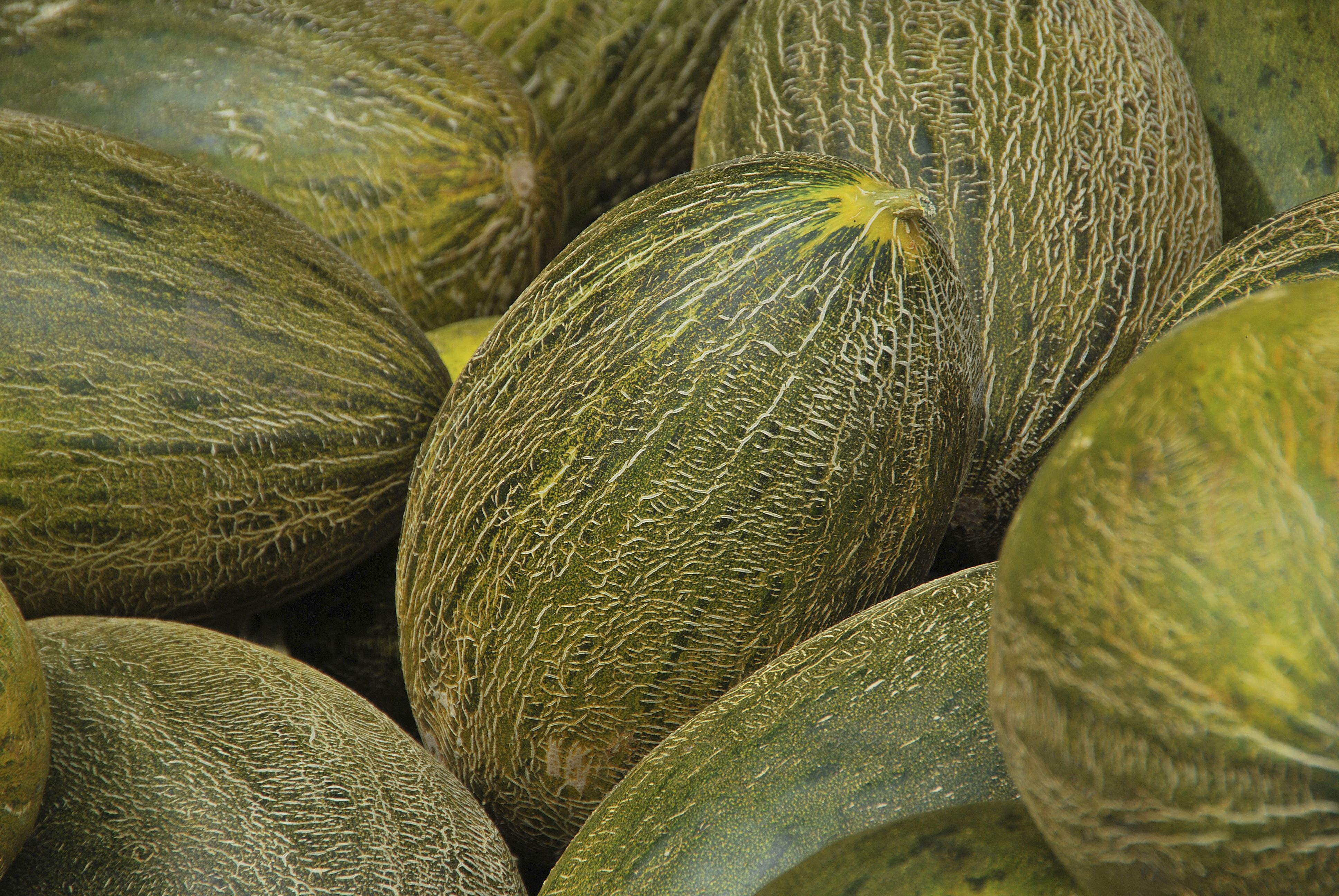 Dónde comprar la mejor fruta de temporada en Chamberí