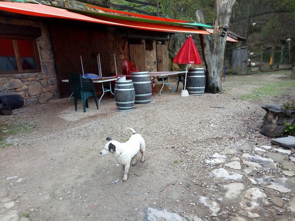 Actividades de aventura Asturias