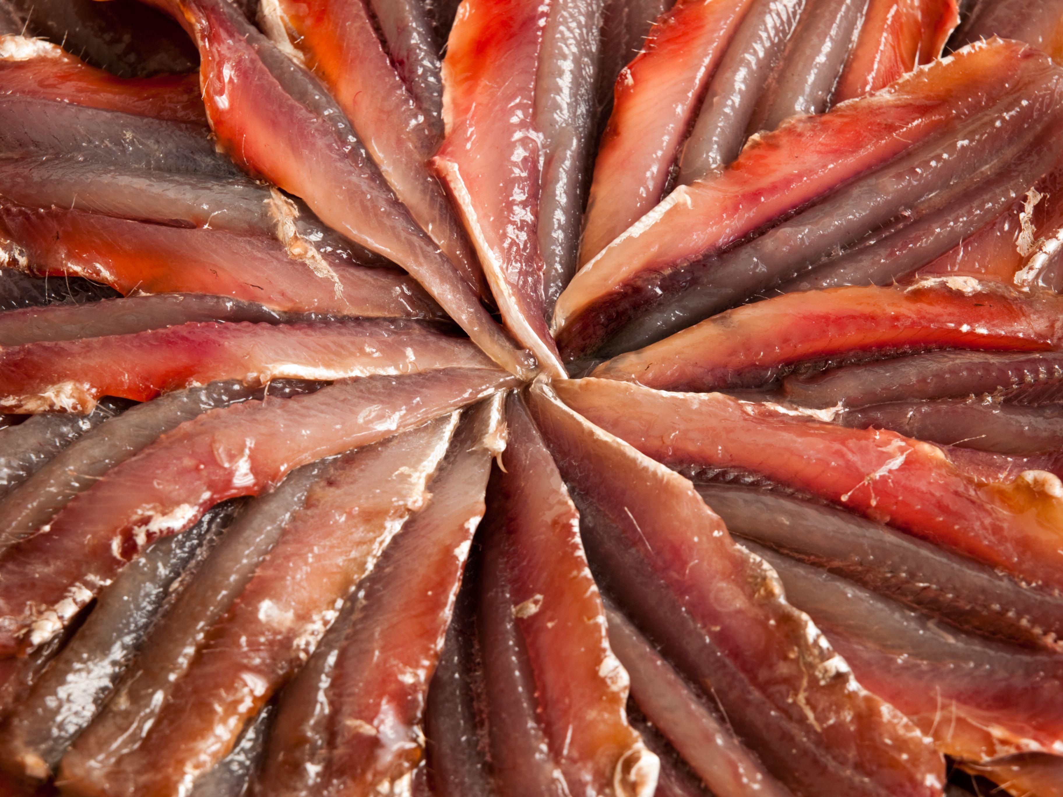 Empresa distribuidora de anchoas en Santoña
