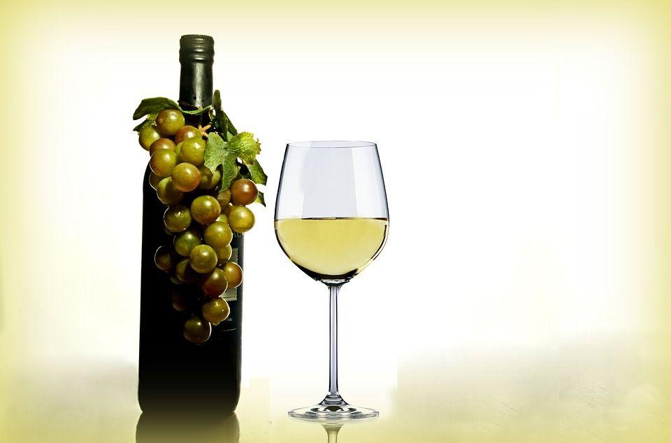Vinos Malvasía seco: Servicios de Bodegas Reymar