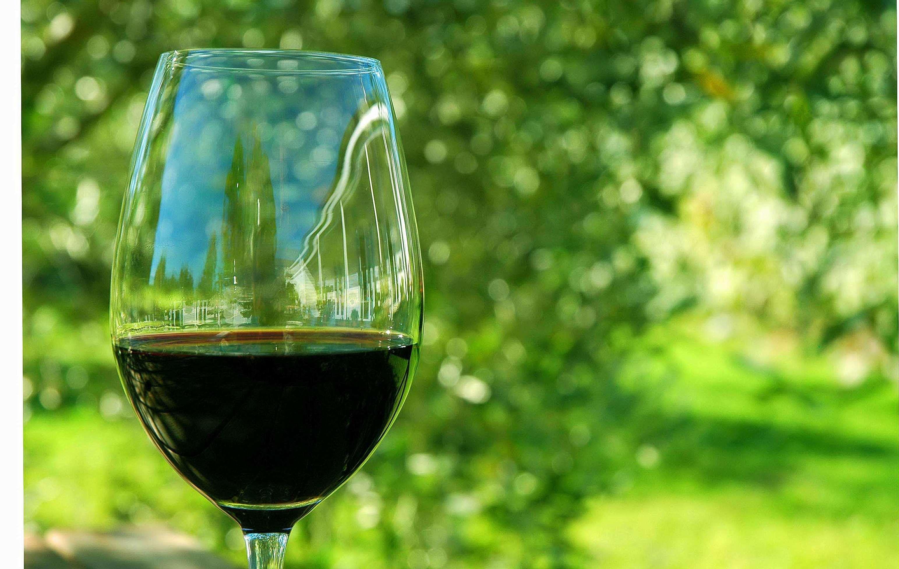Excelente vino de mesa