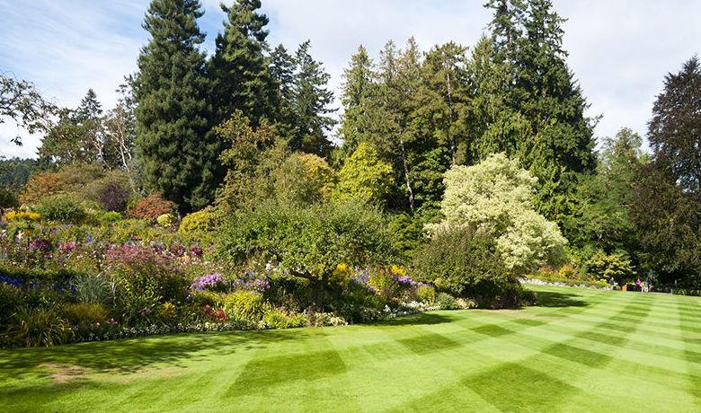 Decoración de jardines: ¿Qué hacemos? de Maestro & Cobo