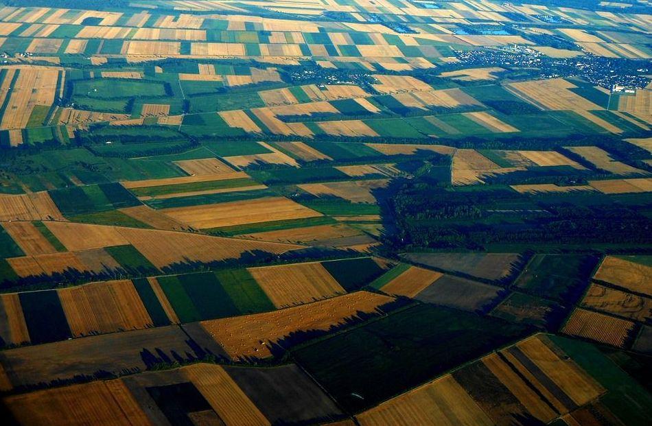 Concentración parcelaria de terrenos: Servicios de Área Ingenieros