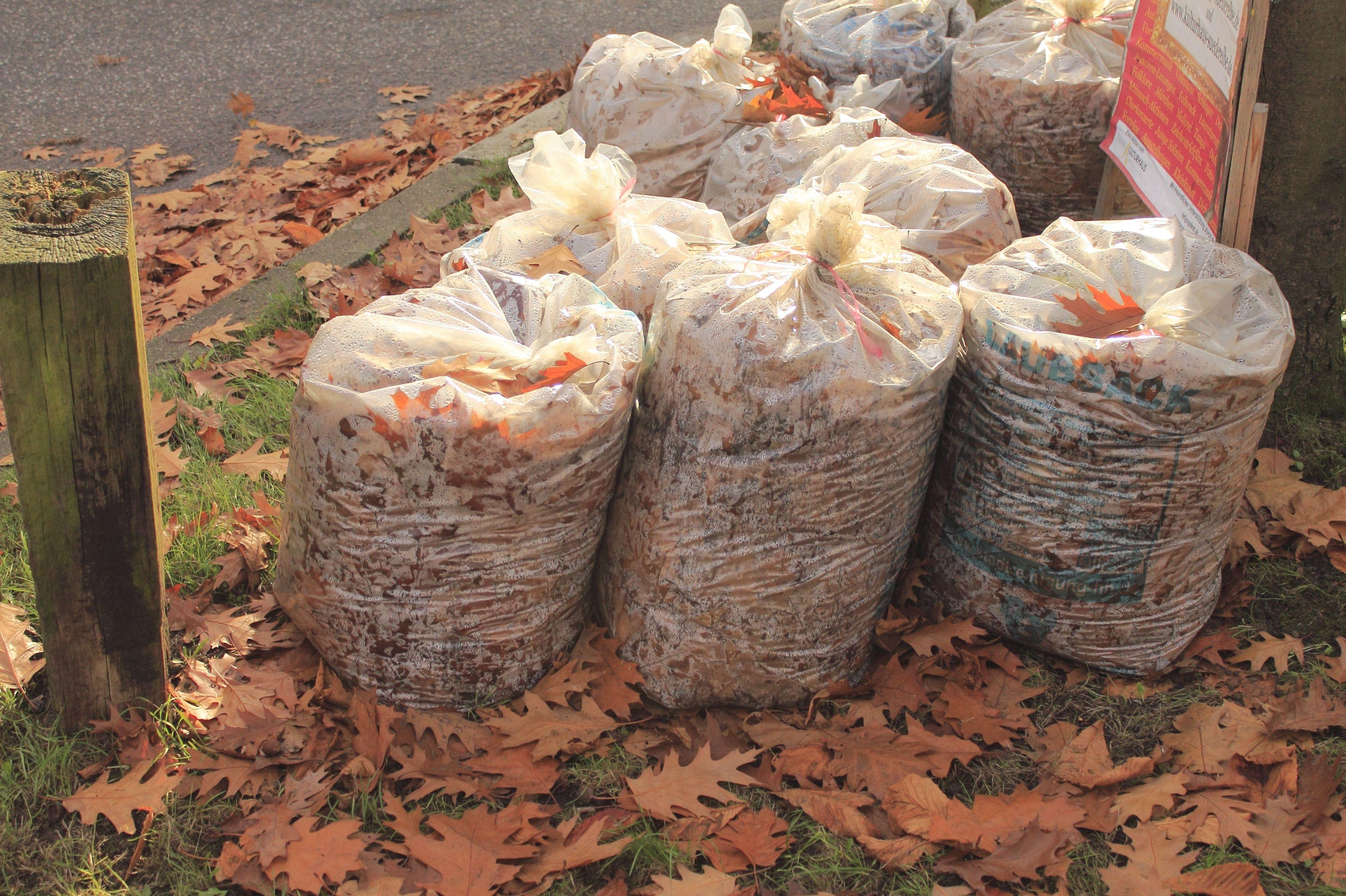 Bolsas para recogida de hojas en Madrid