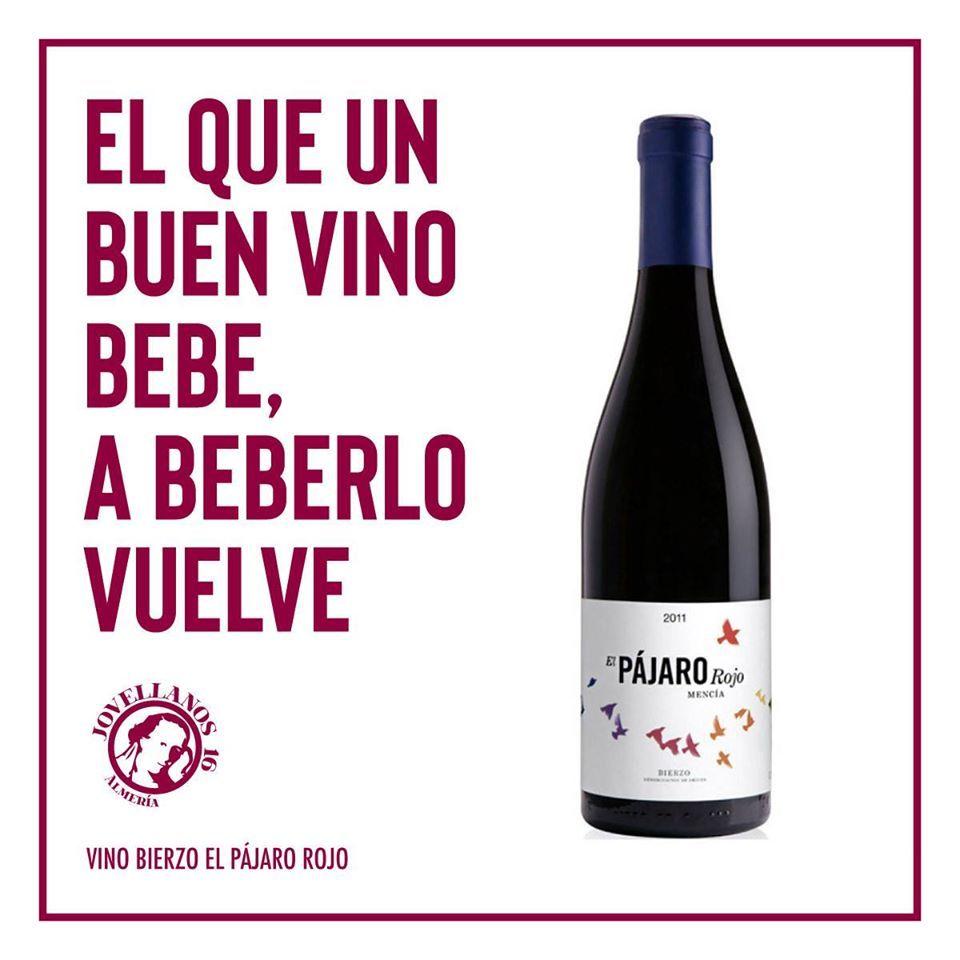 Los mejores vinos de la zona