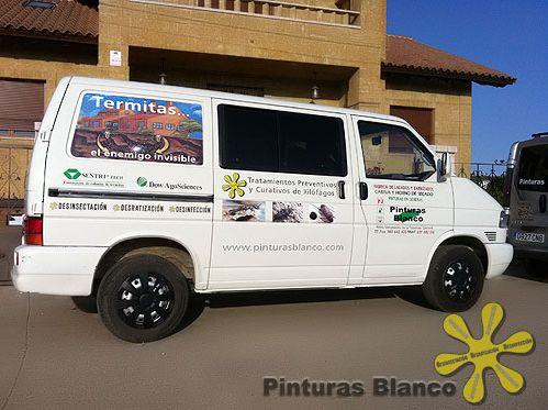 Los mejores profesionales de control de plaga en Zamora