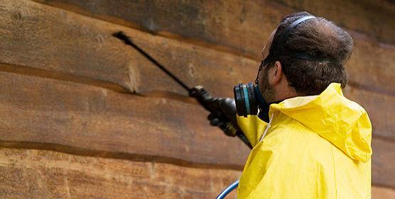 Control de plagas : Servicios   de Guter FF Ocaña