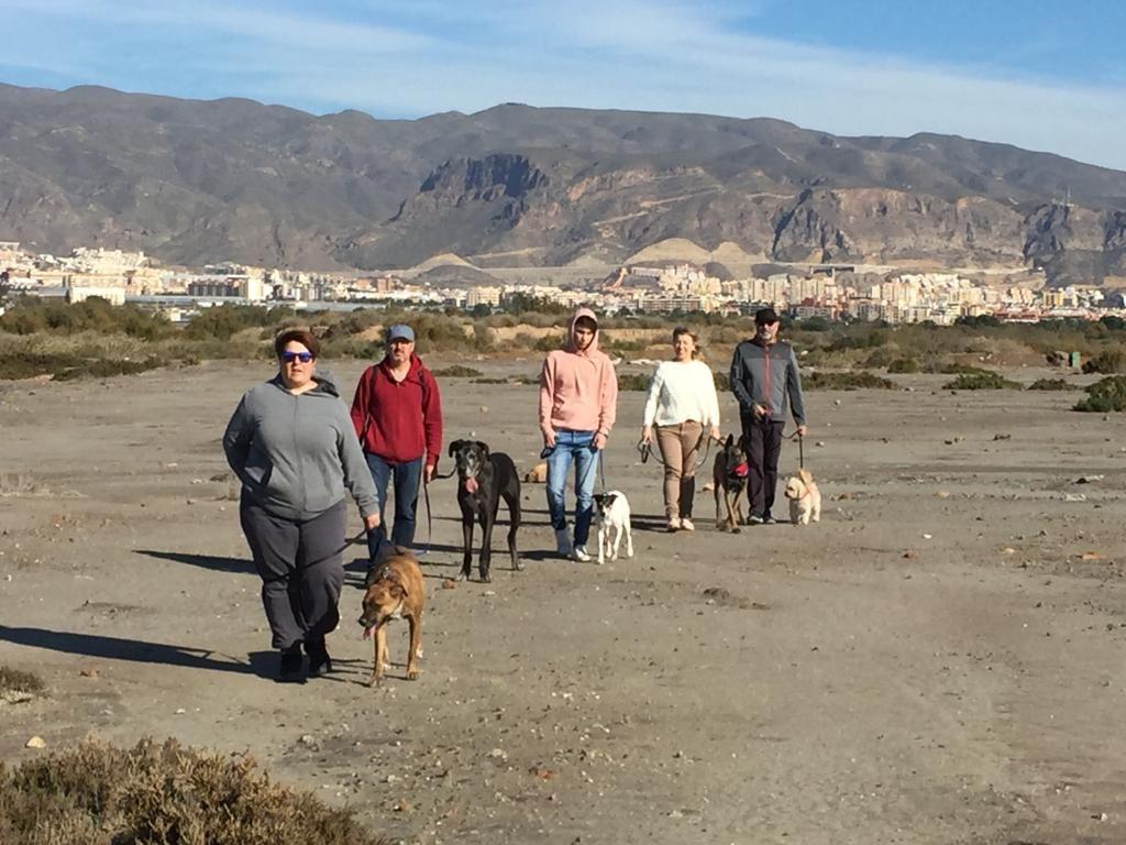 Adiestramiento canino en Roquetas de Mar