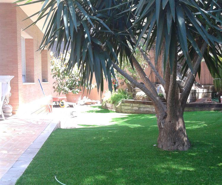 Mantenimiento de jardines en Reus