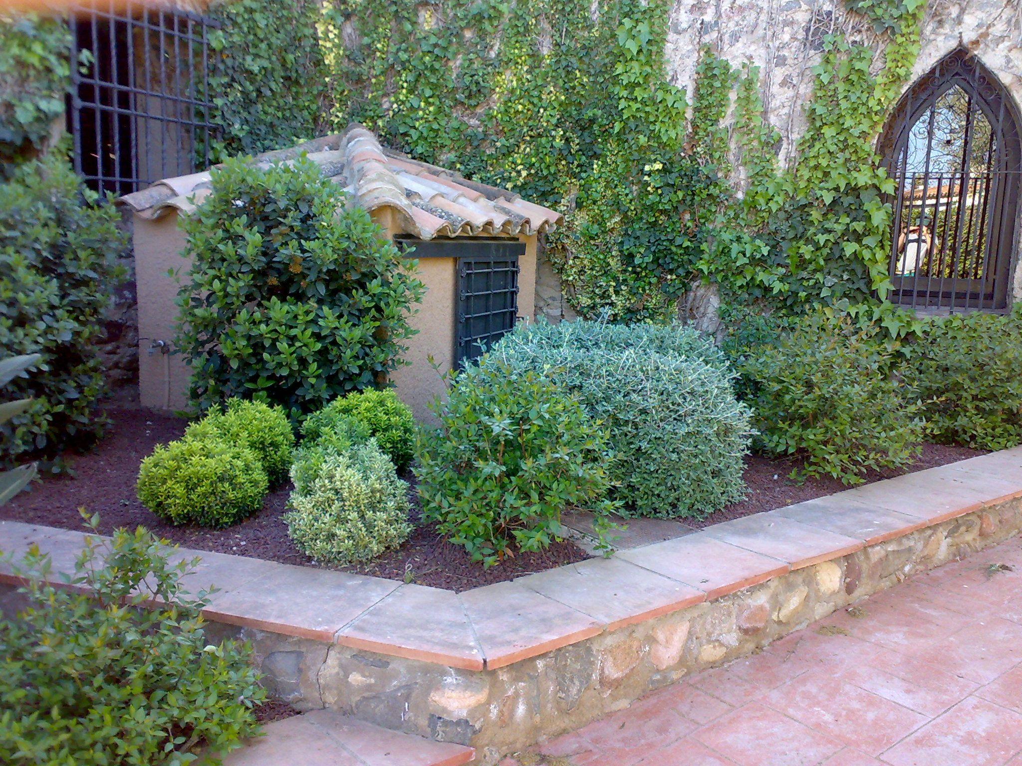 Mantenimiento de jardines: Servicios de Jardinería Cuerba