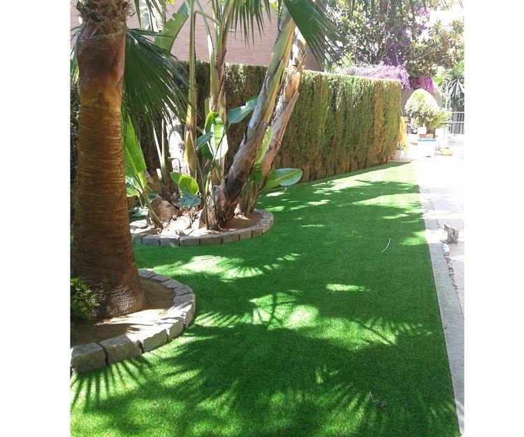 Servicio de jardinería en Reus
