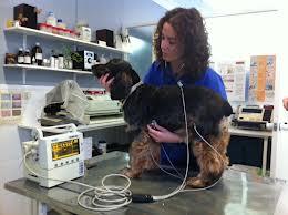 Equipo de Electrocardiograma