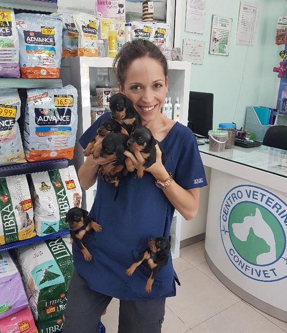 IGUALA CANINA / IGUALA FELINA: Servicios de Centro Veterinario Confivet