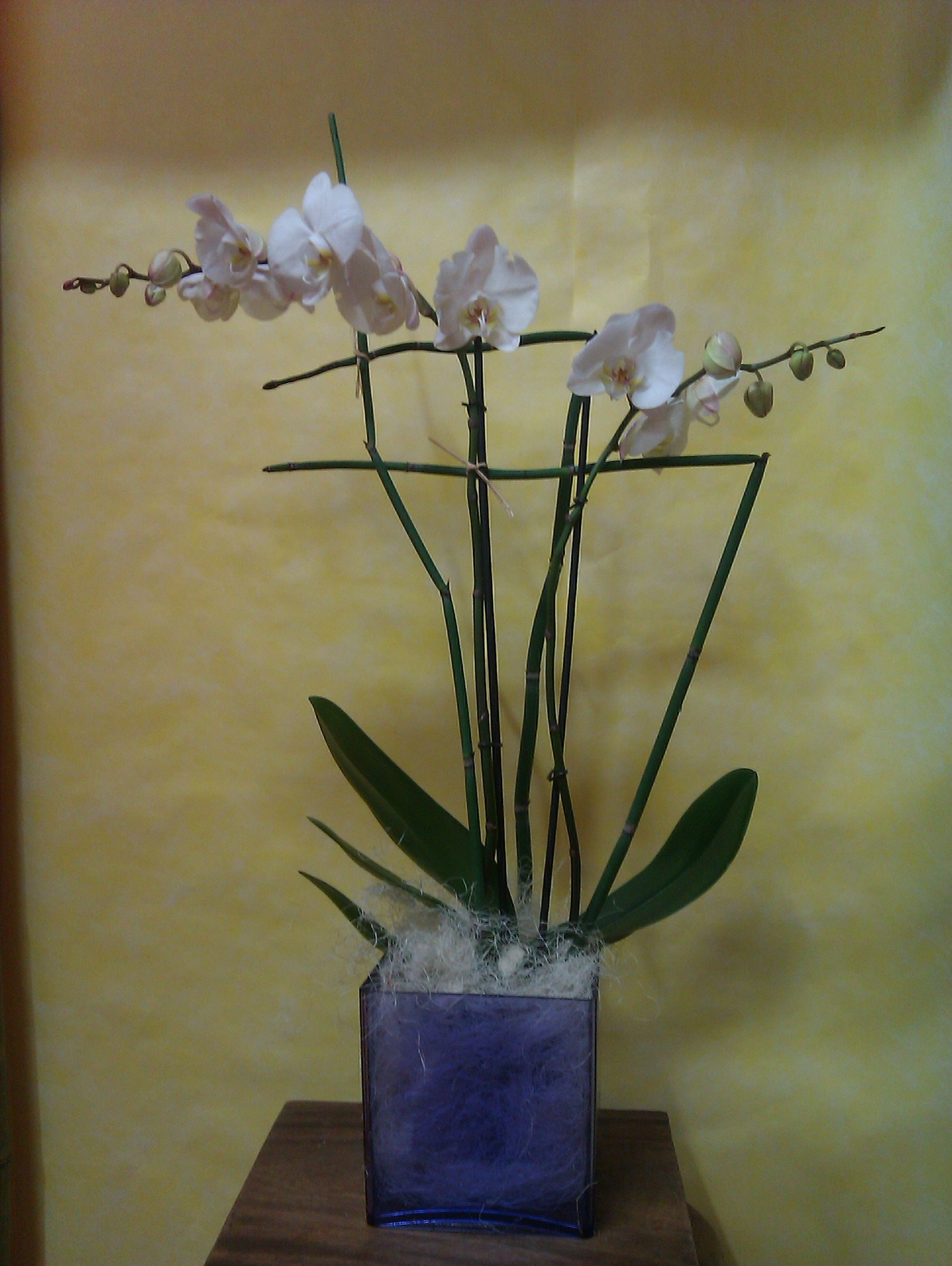 Arte floral en Madrid. Especializados en decoraciones florales