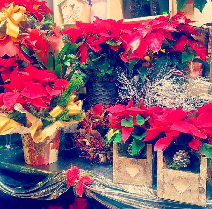 ¡Navidad en nuestra tienda!