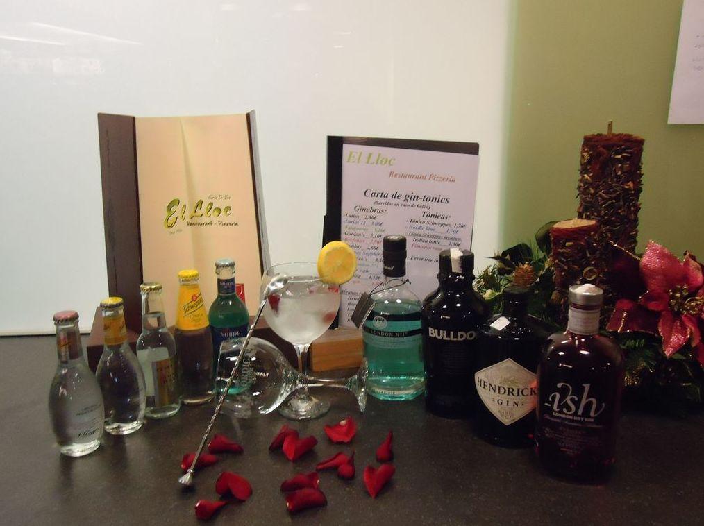 Excelente carta de vino y gin-tonics en Oliva