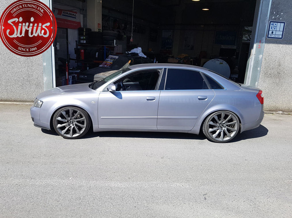 Audi A4 B6 - D2Racing Coilovers